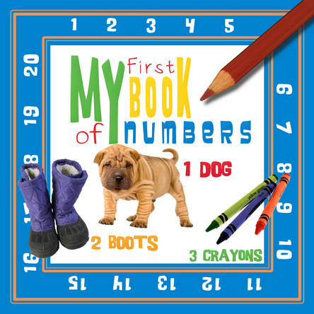 My First Book of Numbers |