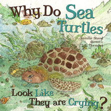 Why Do Sea Turtles Look Like They Are Crying ? | Jennifer Shand