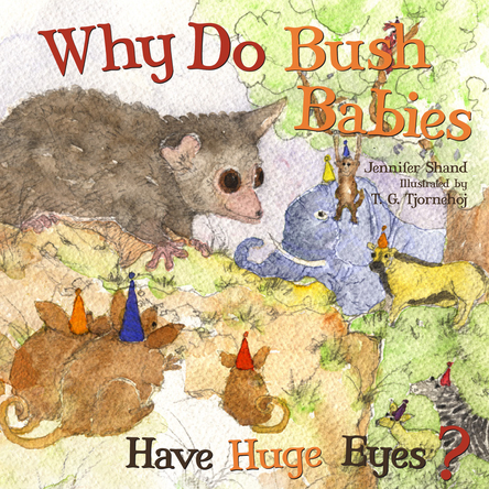 Why Do Bush Babies Have Huge Eyes ? | Jennifer Shand
