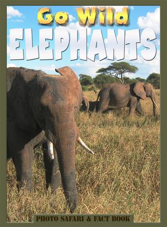 Go Wild Elephants |