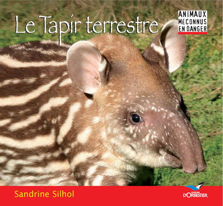 Le tapir terrestre | Sandrine Silhol