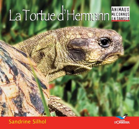 La Tortue d'Hermann | Sandrine Silhol