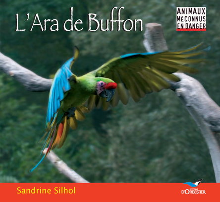 L'Ara de Buffon | Sandrine Silhol